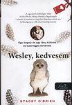 O'Brien, Stacey: Wesley, kedvesem - Egy bagoly és egy lány különös és különleges története