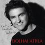 Dolhai Attila: Egy szerelem története