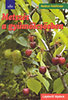 Heidrun Holzförster: Metszés a gyümölcsösben