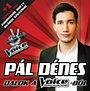 Pál Dénes: Dalok a The Voice-ból