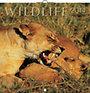 Wildlife 2014 - naptár