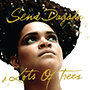 Sena Dagadu: Lots Of Trees