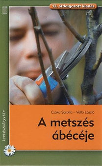 Valló László, Czáka Sarolta: A metszés ábécéje