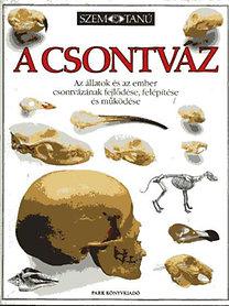 Steve Parker: A csontváz: Az állatok és az ember csontvázának fejlődése, felépítése és működése (Szemtanú sorozat)