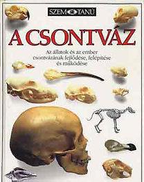 Steve Parker: A csontváz (Szemtanú)