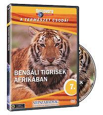 A természet csodái 07. -  Bengáli tigrisek afrikában