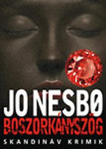 Jo Nesbo: Boszorkányszög (Skandináv krimik)