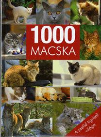1000 Macska