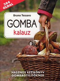 Bruno Tessaro: Gomba kalauz - Hasznos kézikönyv gombagyűjtőknek