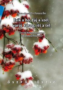 Lukács Józsefné, Ferencz Éva: Esik a hó, fúj a szél, varjú károg, itt a tél