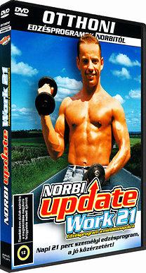 Norbi Update work 21